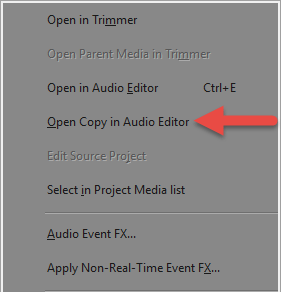 Open Copy in Audio Editor