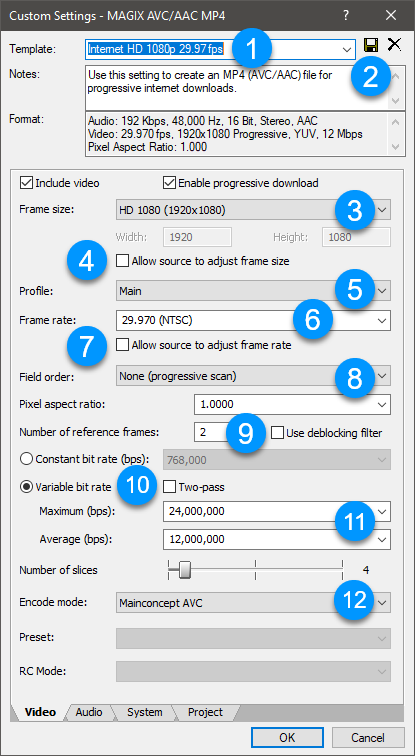 magix avc custom settings