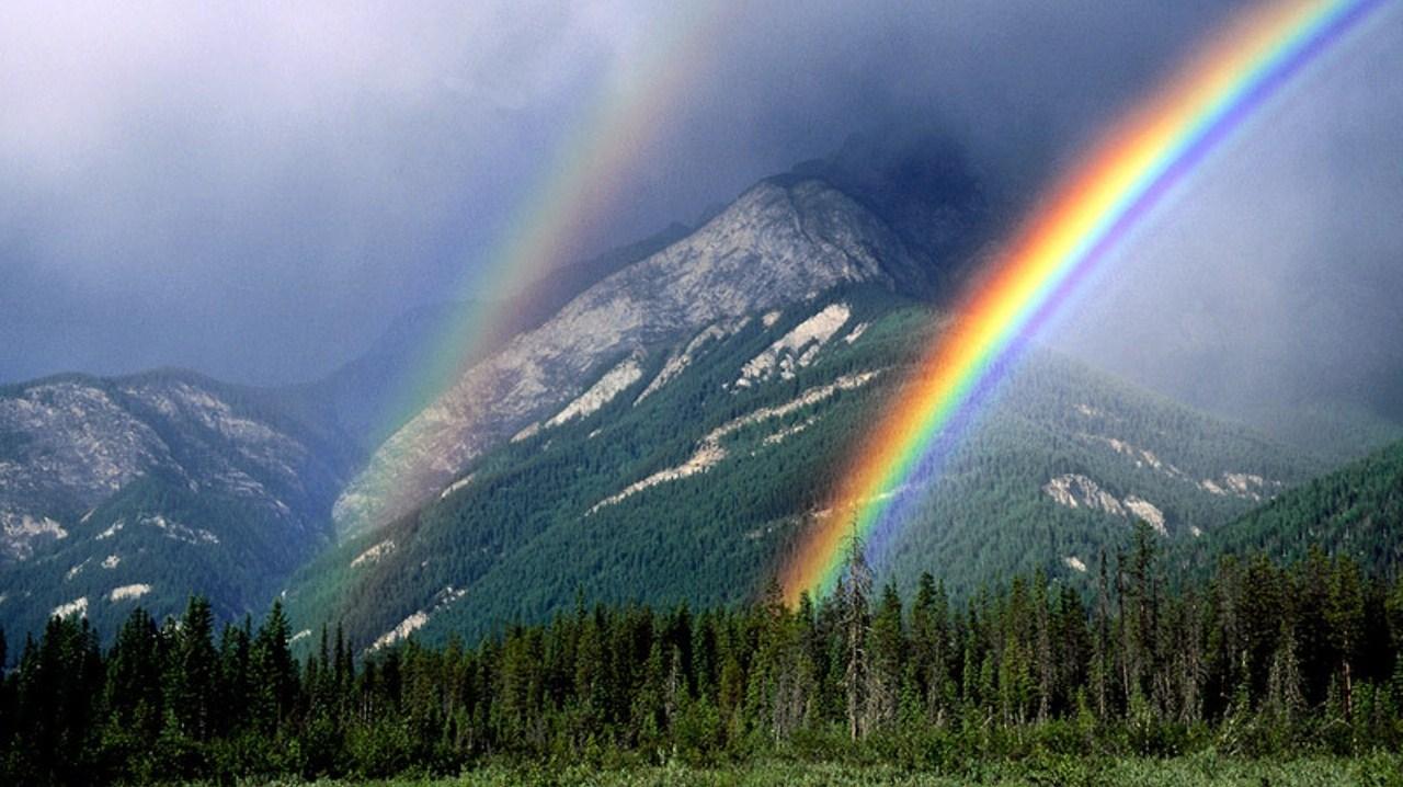 rainbowMYSPACE.jpg